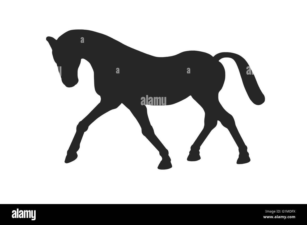 An image showing a horse or pony shape in black silhouetted on white - Stock Image