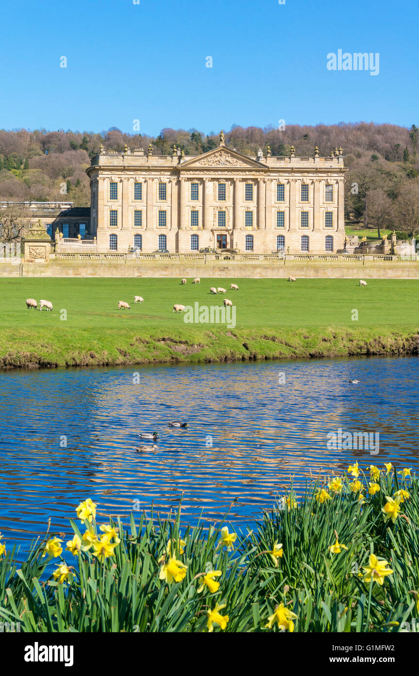Spring at Chatsworth House front facade park and gardens with river Derwent Derbyshire dales England, UK, GB, EU, - Stock Image