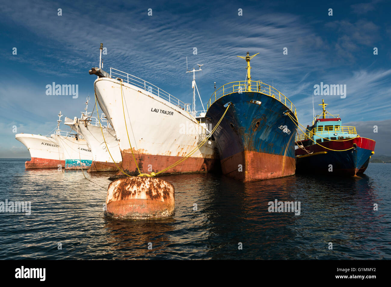 Boats of various ages tied to a rusting buoy.  Suva Harbour,  Fiji - Stock Image