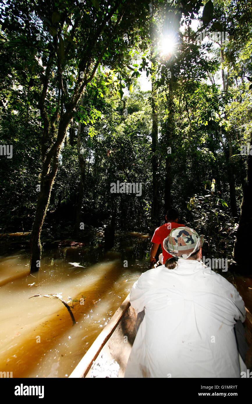 Rio Galvez. Yavari river. Amazon. Peru - Stock Image