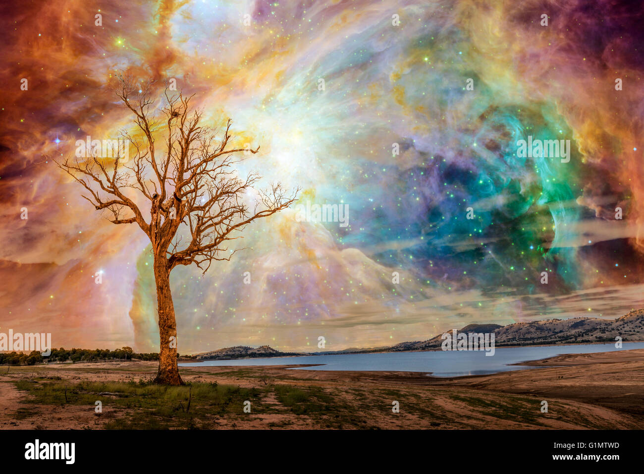 Alien planet fantasy landscape. Tree standing near lake with bright galaxy and stars shining in the sky. Elements - Stock Image