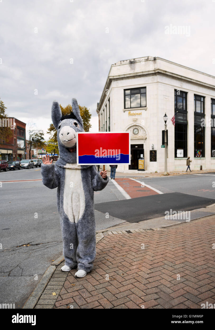 Person dressed in a democrat donkey costume holding a blank sign Bennington Vermont, New England, USA - Stock Image