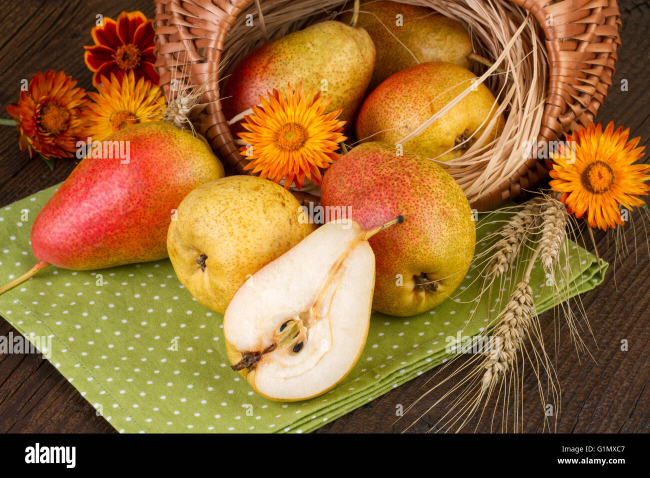 Pears Thanksgiving Day decoration - Stock Image