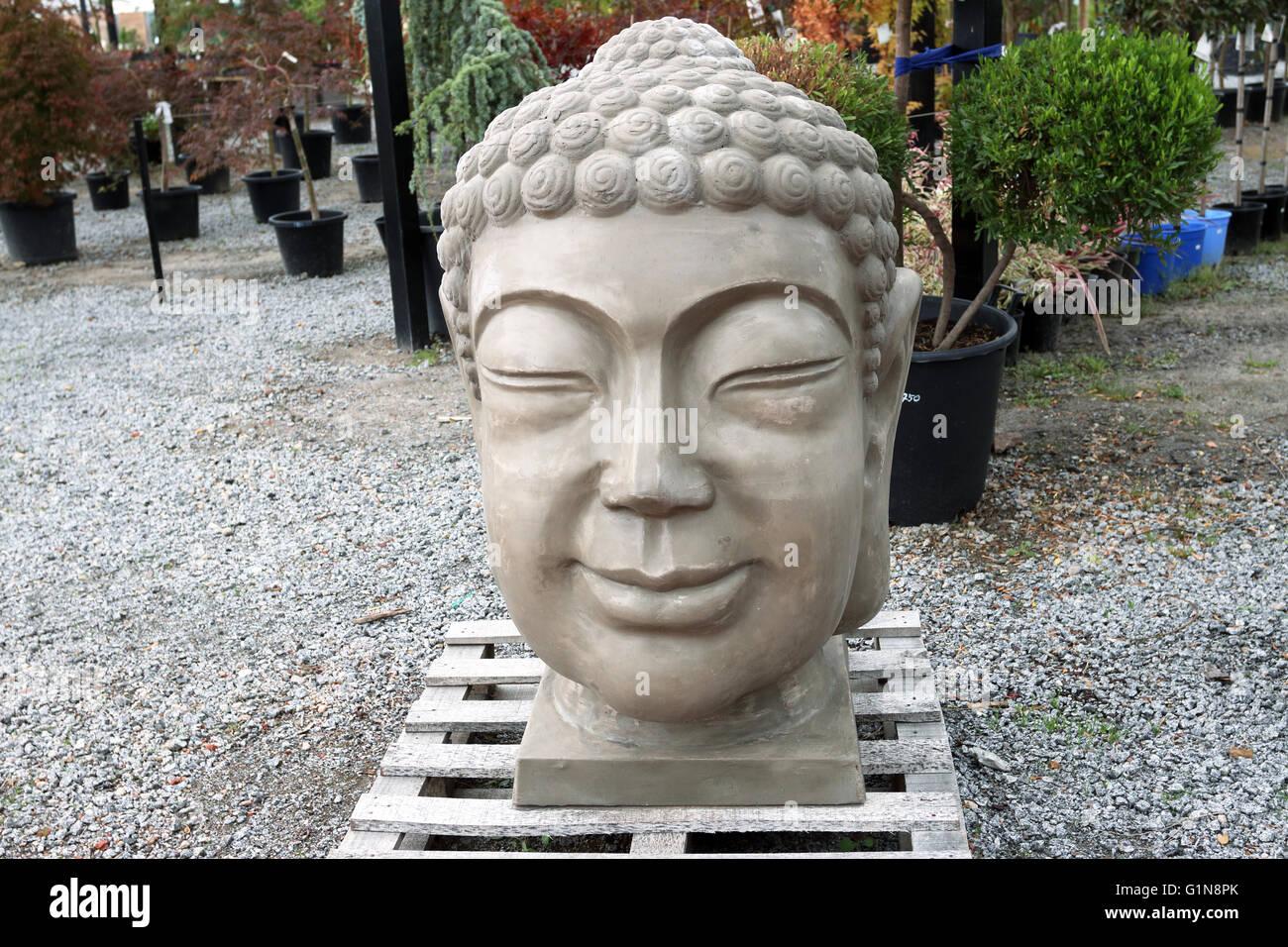 Buddhau0027s Head Garden Statue In A Garden Nursery, Melbourne Victoria  Australia   Stock Image