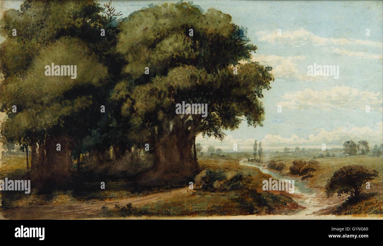 Prilidiano Pueyrredon - Caprocho (Olivos 13 Nov. 1858)   - Museo Nacional de Bellas Artes de Buenos Aires - Stock Image