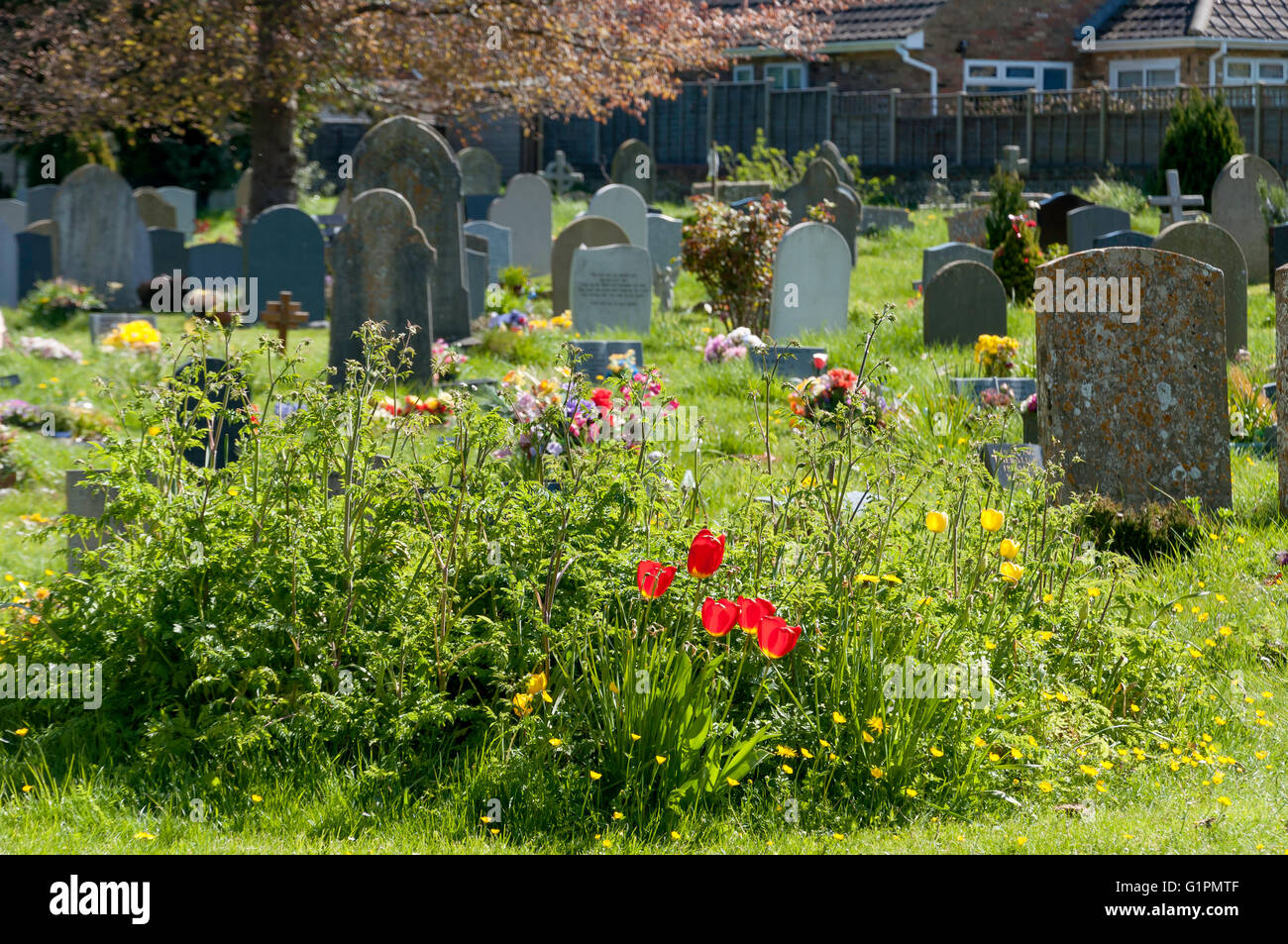 Graves at St Andrew's Church churchyard, Church Lane, Chinnor, Oxfordshire, England, United Kingdom - Stock Image