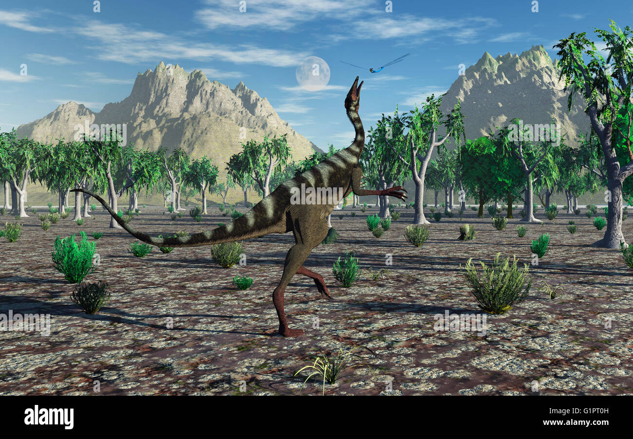 A  Pelecanimimus Dinosaur , Jumping To Catch A Giant Dragonfly - Stock Image