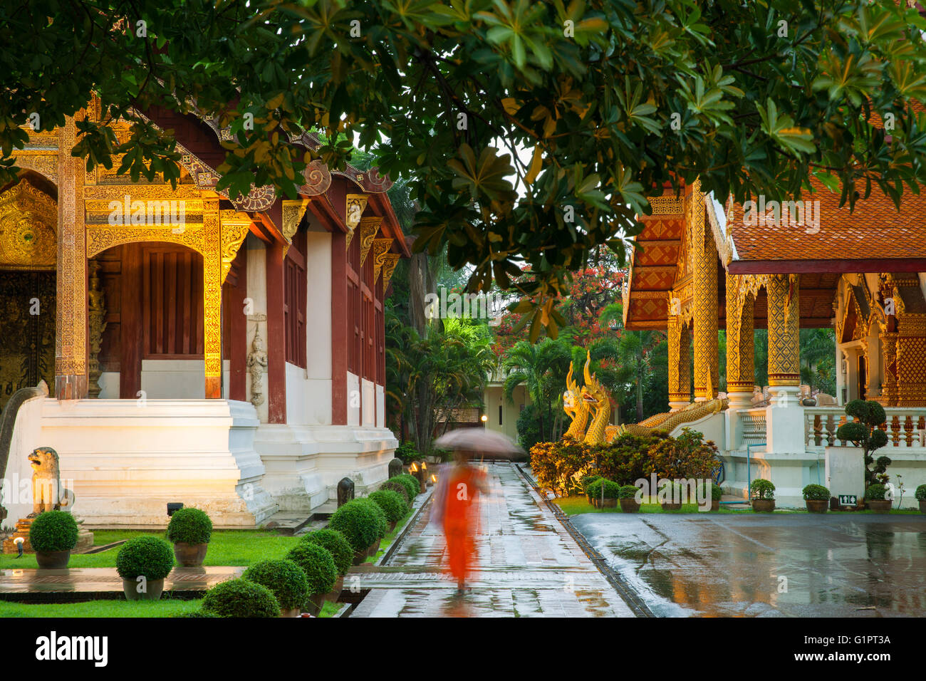 Monk walking under umbrella at the Wat Phra Singh Temple, Chiang Mai, Thailand. Chiang Mai's most revered temple. - Stock Image
