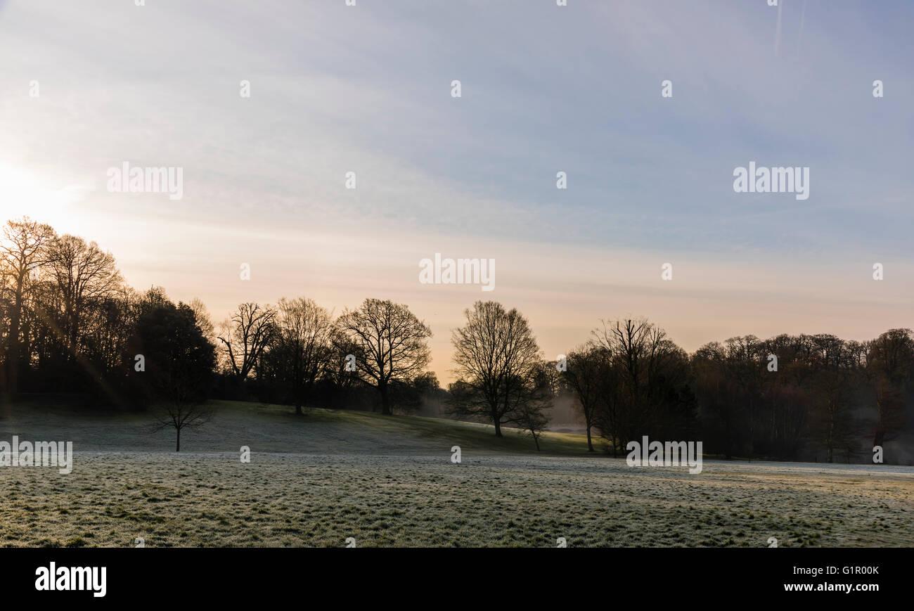 Early morning light captured on a frosty Hampstead Heath, London, UK. - Stock Image