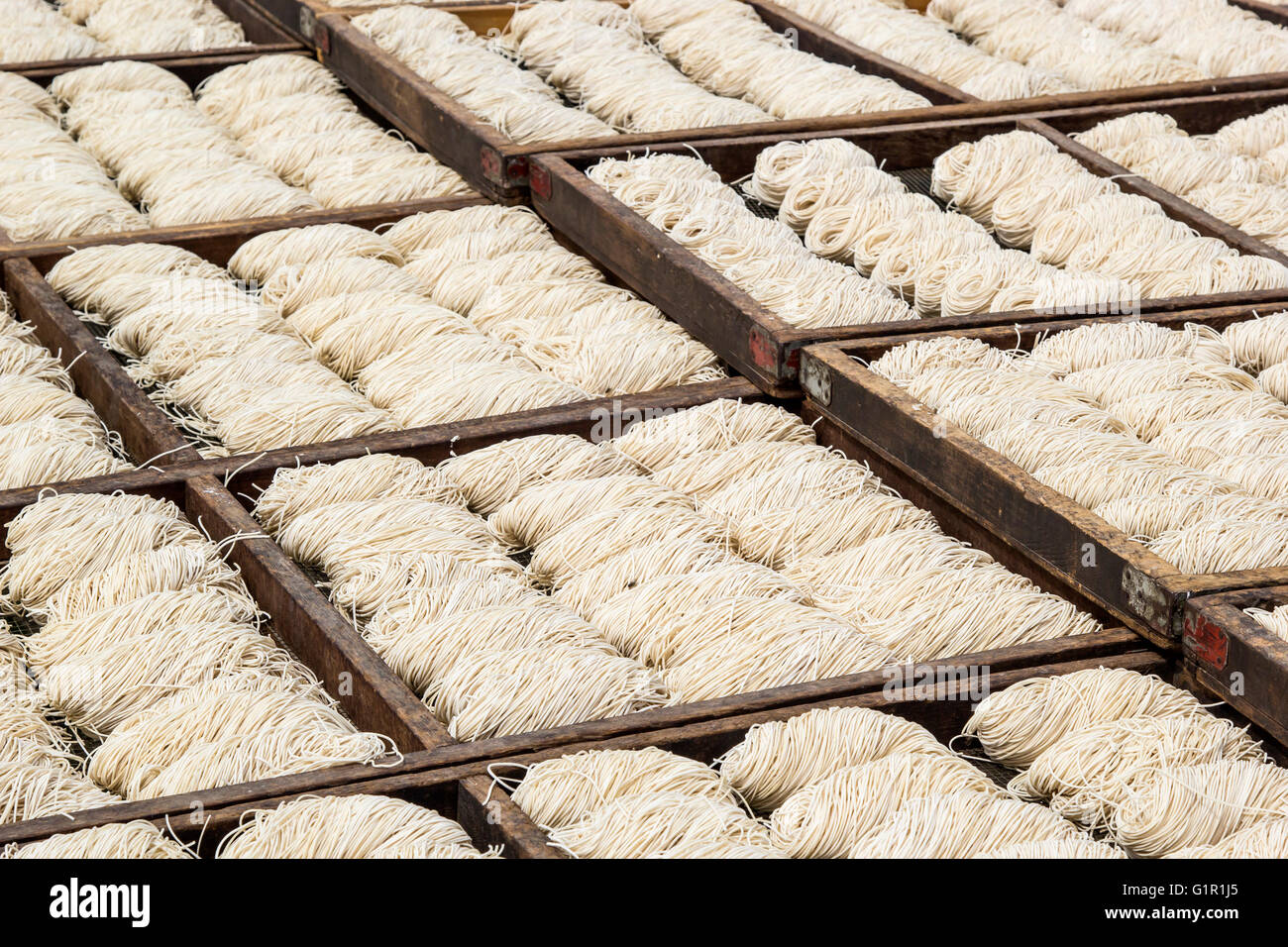 White chinese noodles in wooden trays drying outdoor under the sun - Stock Image