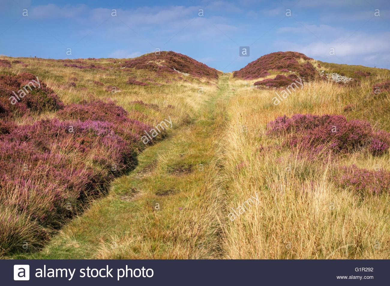 Dyne Steel tramroad incline Blaenavon World Heritage Site, Torfaen Wales UK - Stock Image