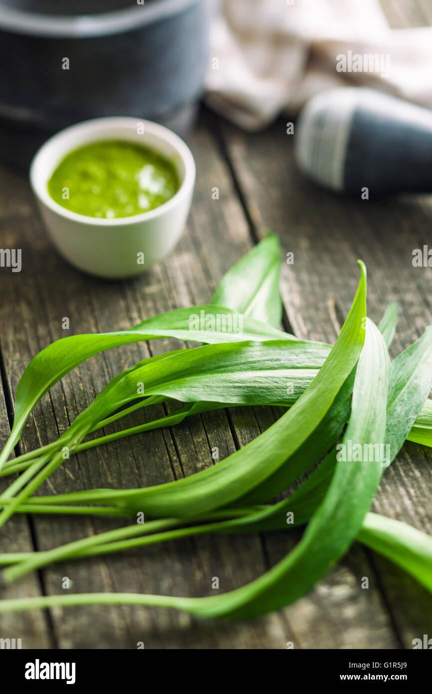 Fresh ramsons leaves. Wild garlic leaves. Healthy vegetable. - Stock Image