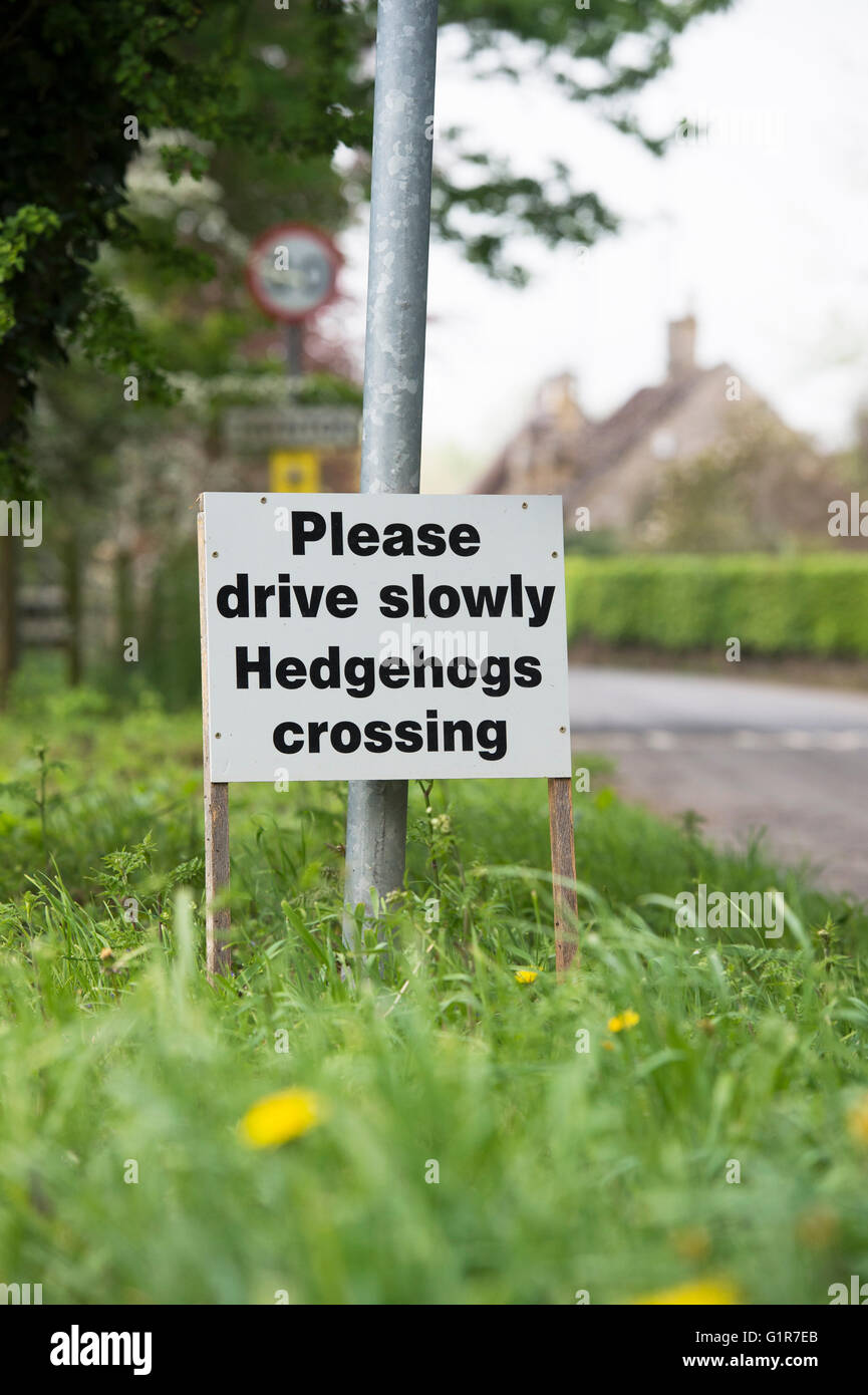 Please drive slowly hedgehogs crossing sign in the cotswold village of Taynton. Cotswolds, Oxfordshire, England - Stock Image