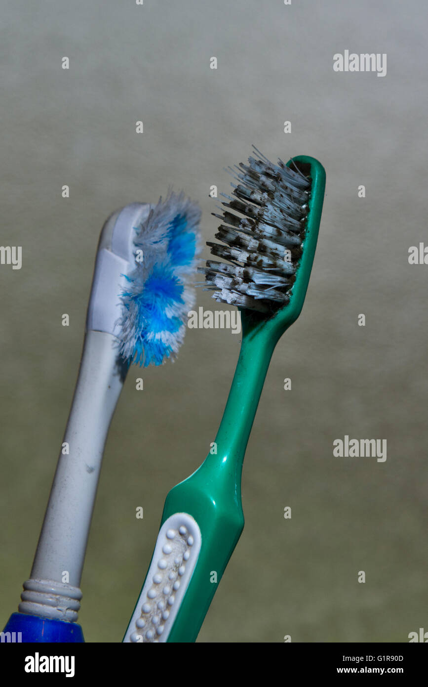Dirty and worn out toothbrushes found within a staff members flat at Linford Park Nursing Home, Hampshire, UK - Stock Image