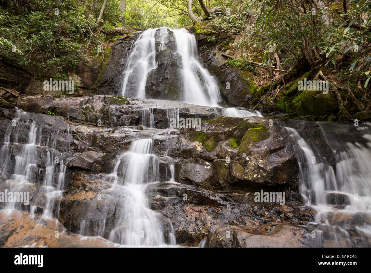 Great Smoky Mountains National Park, Tennessee - Laurel Falls. - Stock Image