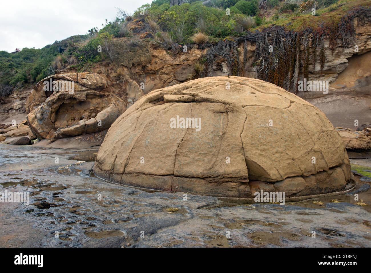 Katiki Boulders on Shag Point, New Zealand - Stock Image