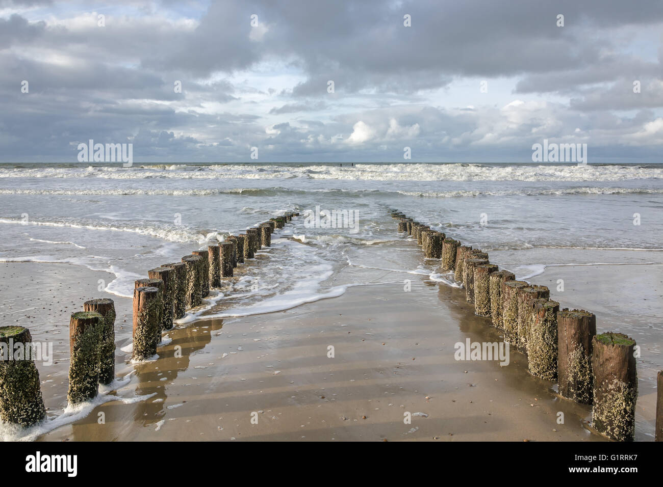 Breakwaters on the coast of The North Sea - Stock Image