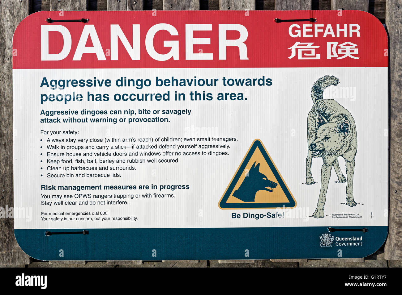 Sign, warning, danger of Dingo (Canis lupus dingo), Fraser Island, Great Sandy National Park, Queensland, Australia - Stock Image