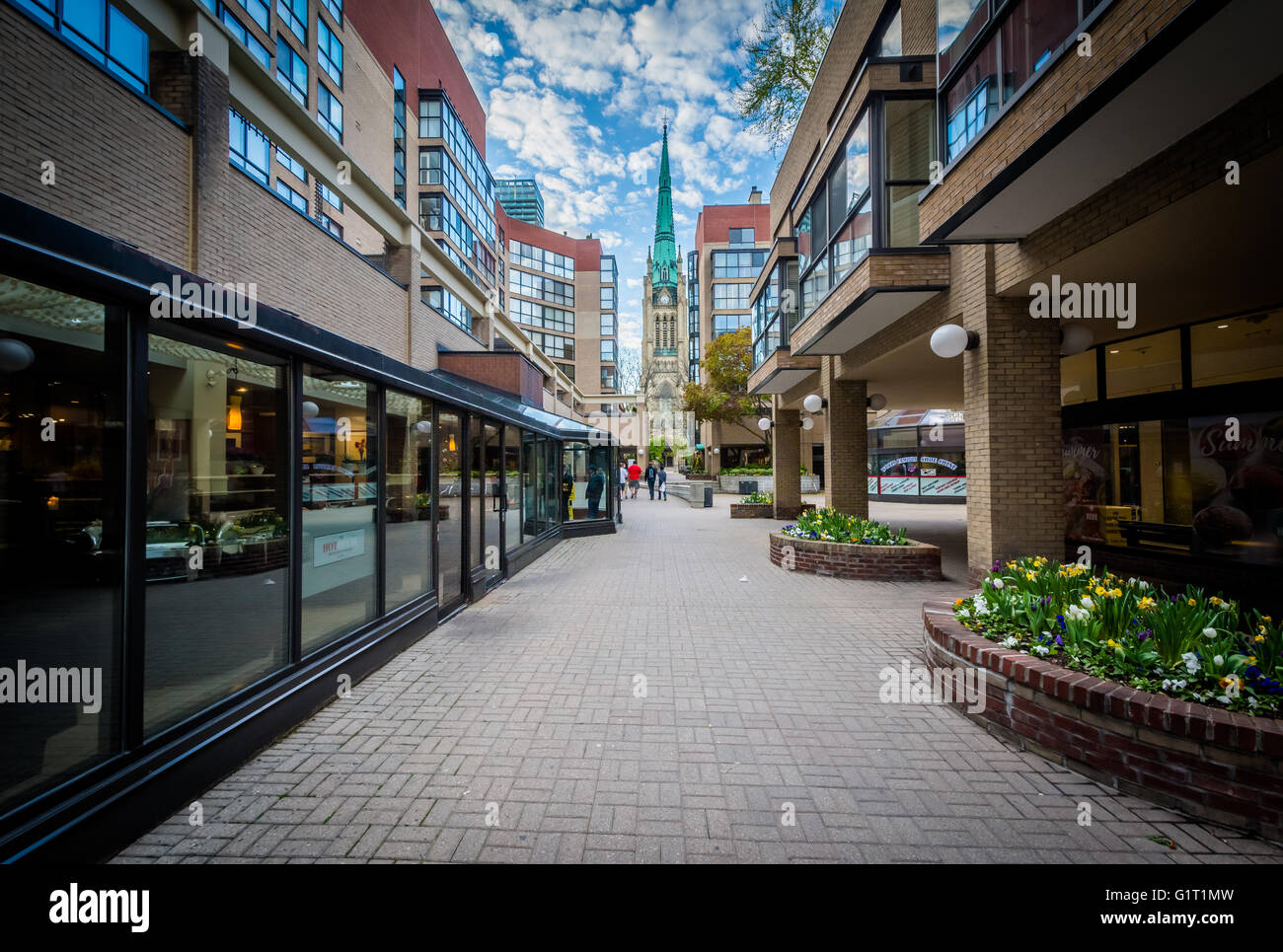 Market Lane Park and The Cathedral Church of St. James, in Toronto, Ontario. - Stock Image