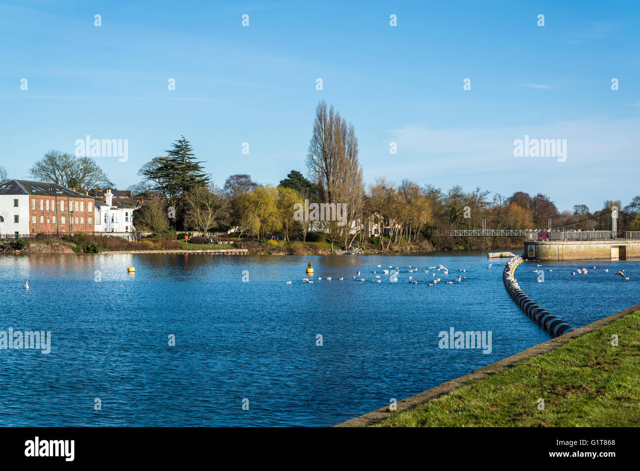 Exeter, river Exe, Devon, England, United Kingdom - Stock Image