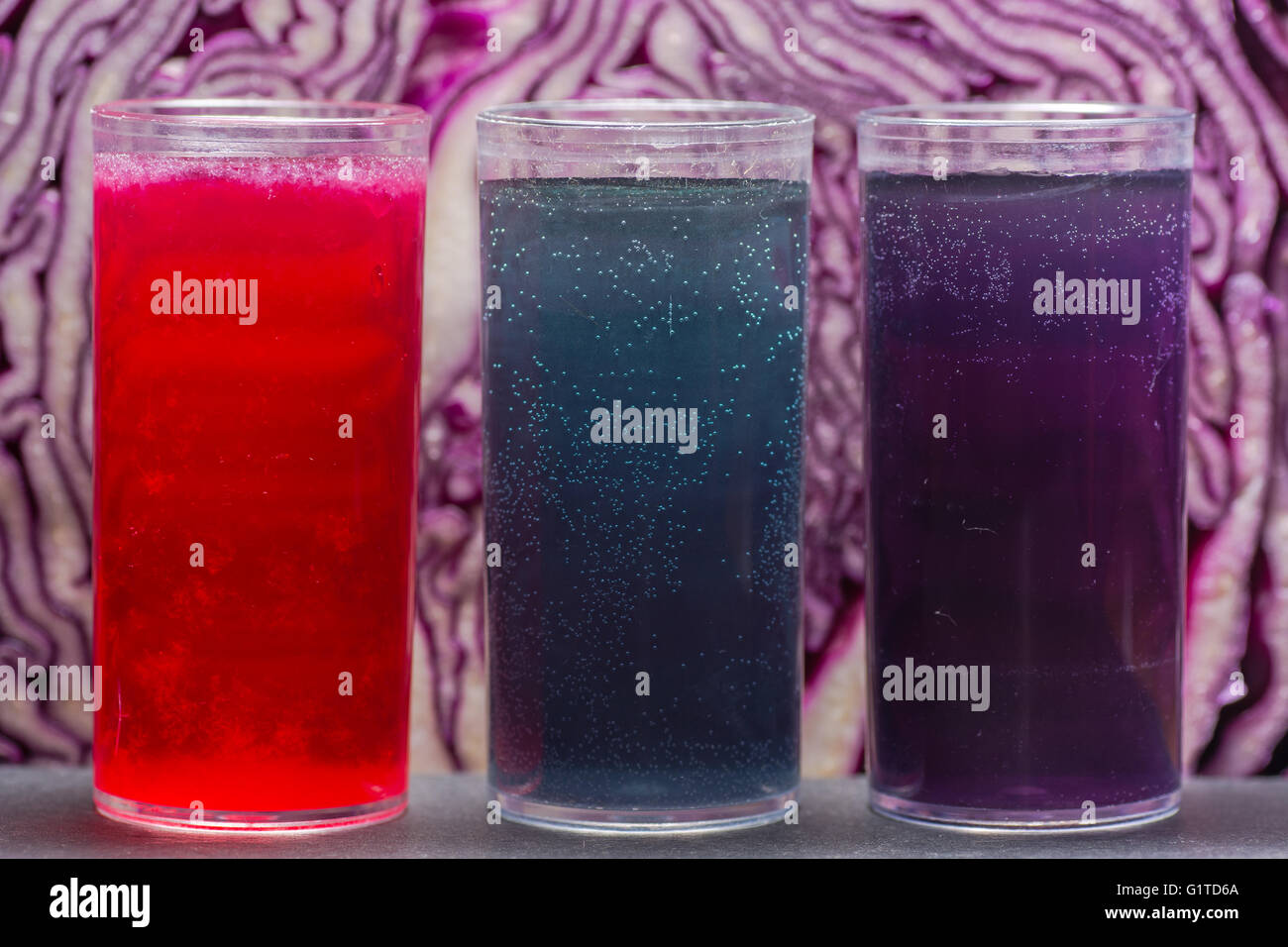 Red cabbage pH indicator solution. Acidic lemon juice (red), alkali sodium bicarbonate (blue) and neutral water - Stock Image