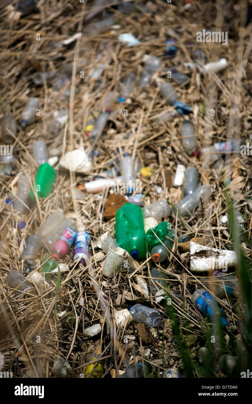 Rubbish accumulates in East India Dock Basin,  in east London, Britain May 19, 2016. Copyright photograph John Voos - Stock Image