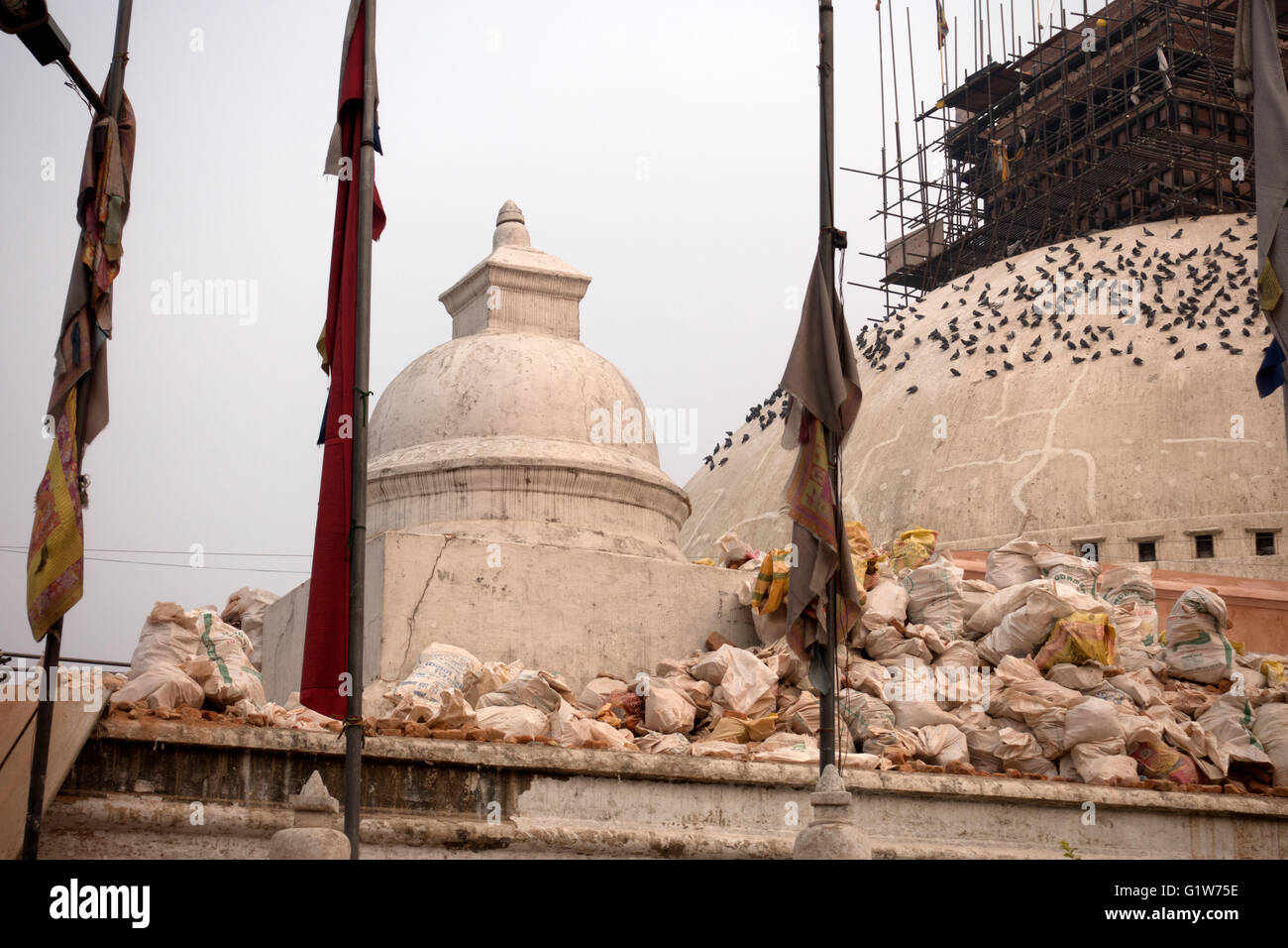 Boudhanath Stupa, a buddhist temple damaged in the earthquake in Nepal, Kathmandu, Nepal - Stock Image