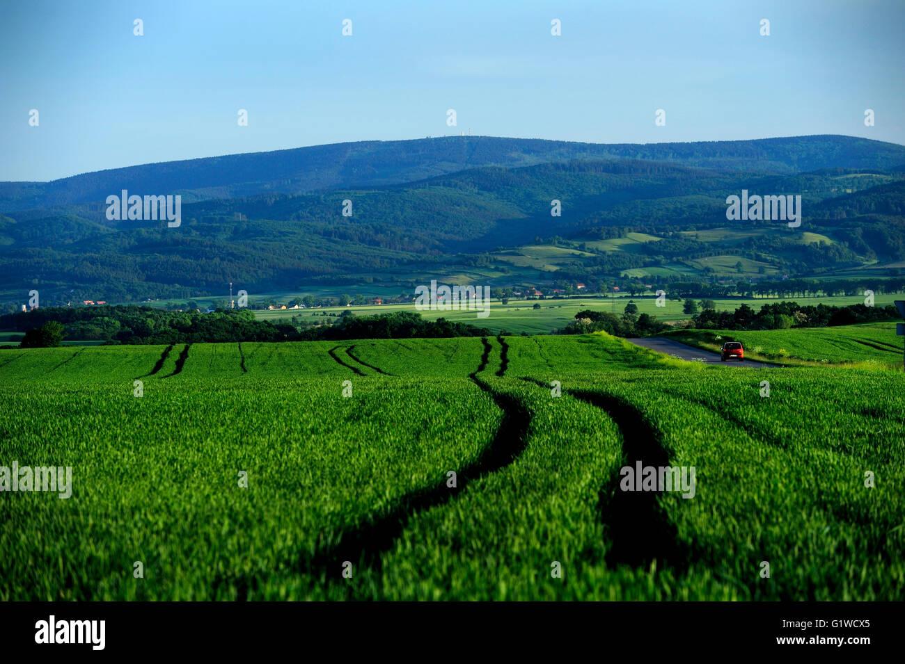 dolnoslaskie, mountain,1015 m above sea level, wlk.sowa, sudety, Hohe Eule, landscape, spring, weather, silesia, - Stock Image