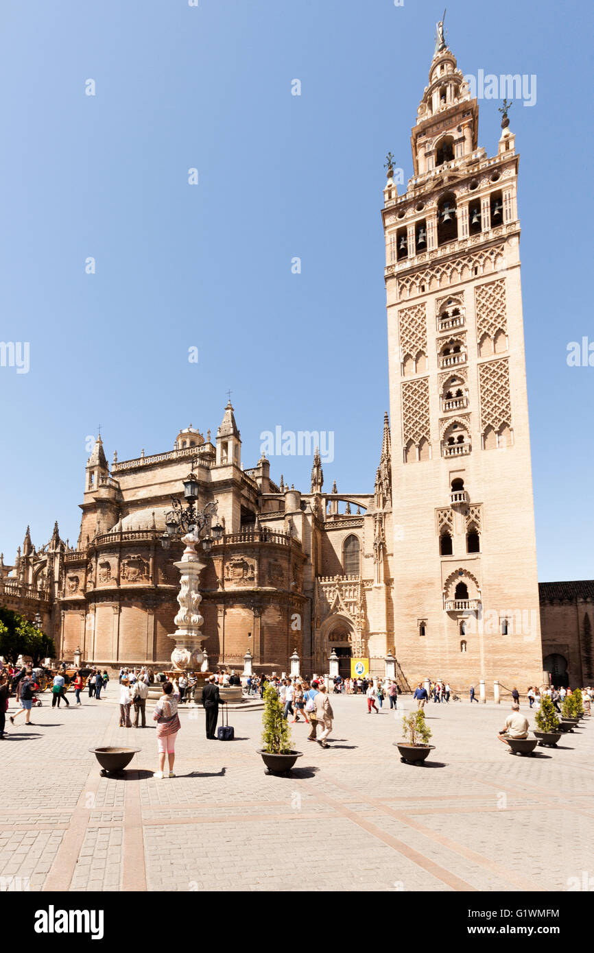 La Giralda, bell tower of Seville Cathedral at the Plaza del Triunfo, Seville, Spain - Stock Image