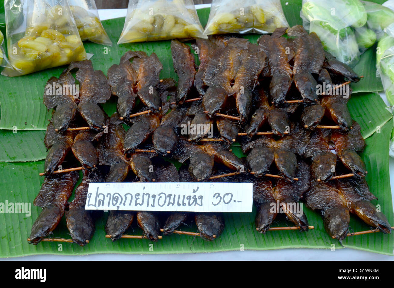 Walking Catfish Stock Photos & Walking Catfish Stock ... - photo#27