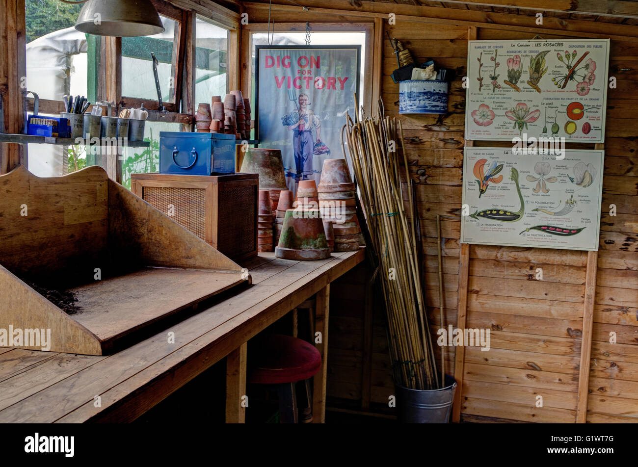 A well-ordered potting shed in the grounds of The Menagerie, Horton, UK - Stock Image