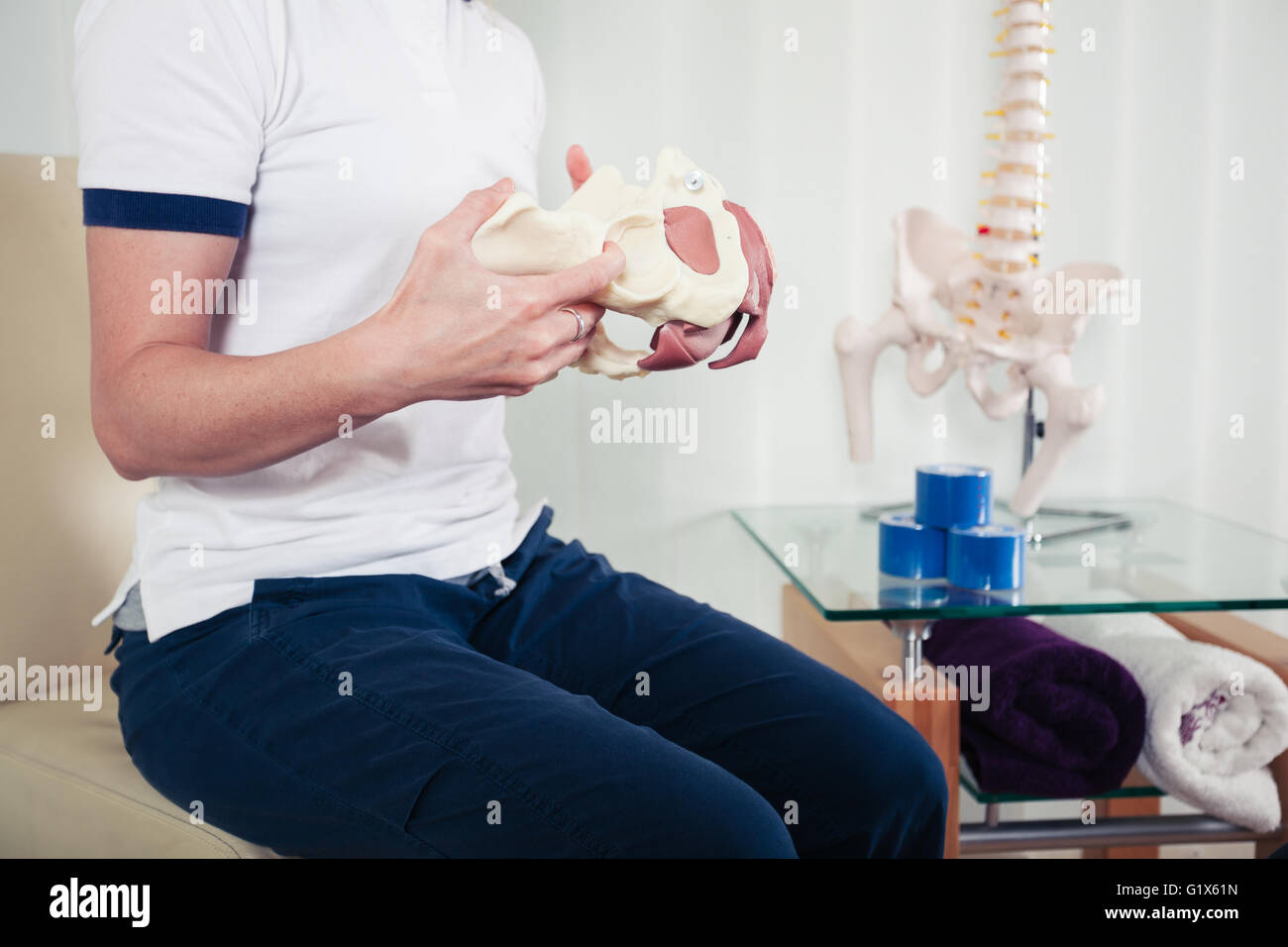 A physiotherapist is holding a model of a human pelvis - Stock Image
