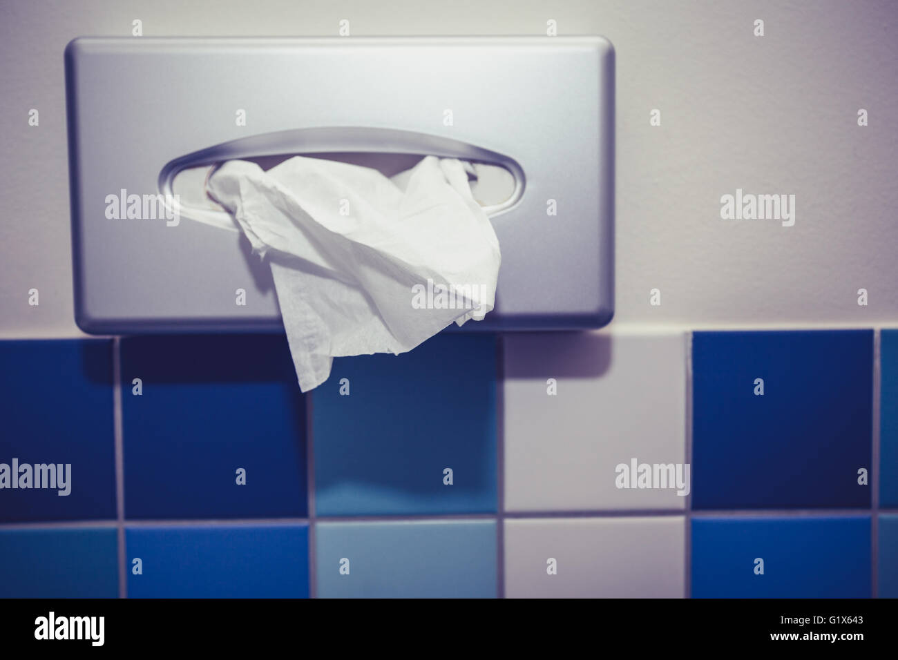 Bathroom Tissue Stock Photos & Bathroom Tissue Stock Images - Alamy