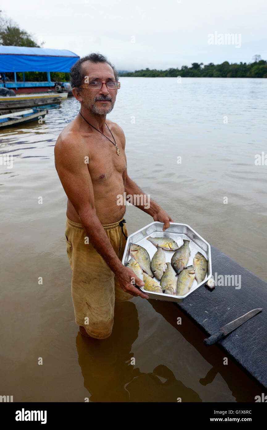 Fisherman with small catch, Piranhas (Serrasalmidae) Pimental, district Itaituba, Pará state, Brazil - Stock Image