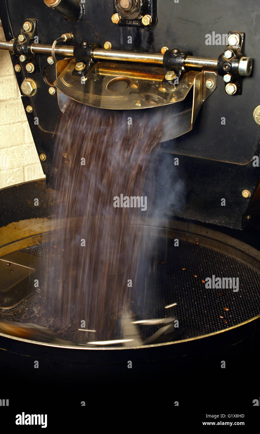 Photo of a large coffee roaster, just as the beans are extracted and slowly stirred in the cooling cylinder. - Stock Image