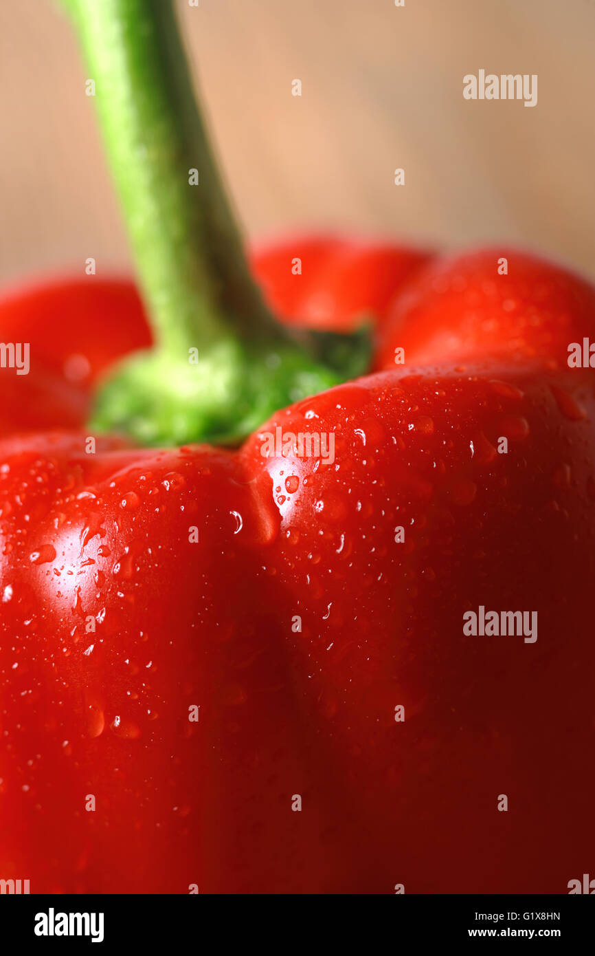 Macro photo of a washed red pepper. - Stock Image