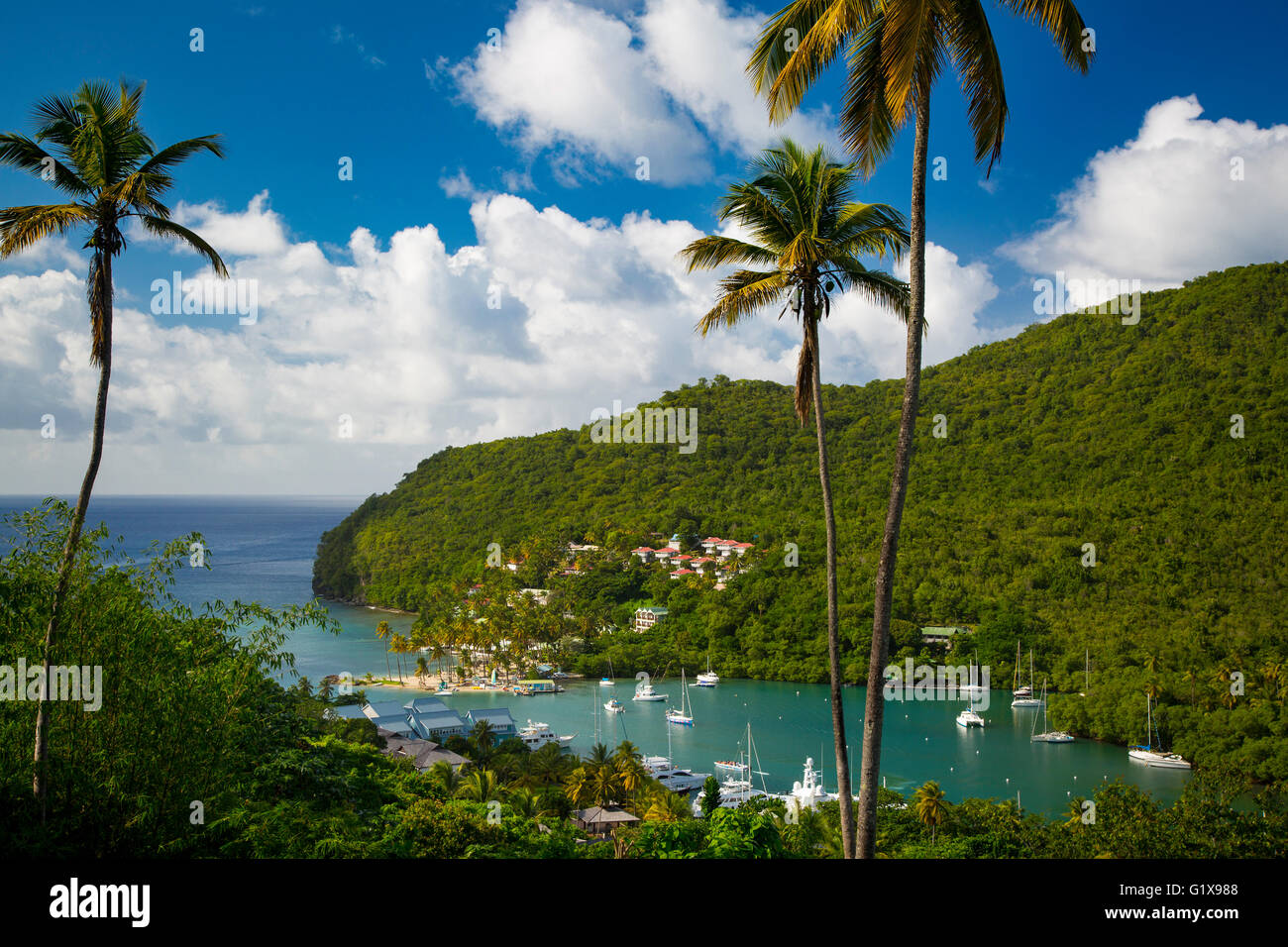 Elevated view of Marigot Bay, St. Lucia, West Indies - Stock Image