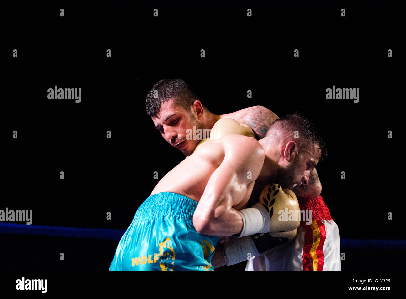 Gijon, Spain. 21st May, 2016. Juancho Gonzalez and Marc Vidal during the boxing match of Spanish national featherweight - Stock Image