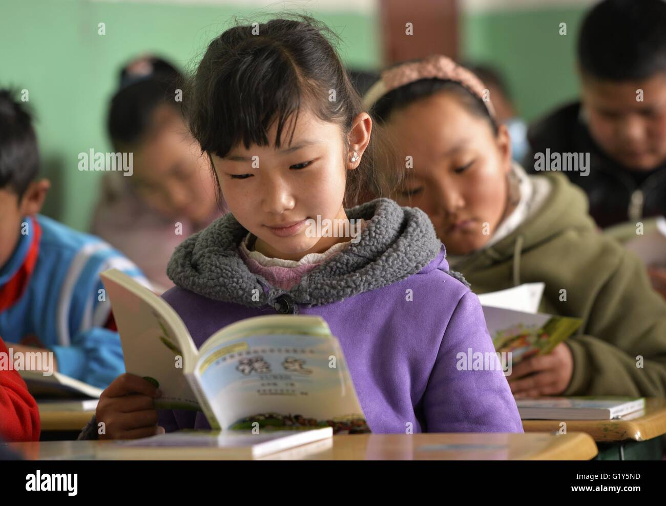 Lhasa, China's Tibet Autonomous Region. 1st Mar, 2016. Students read their new books in Lhasa No. 1 Primary - Stock Image