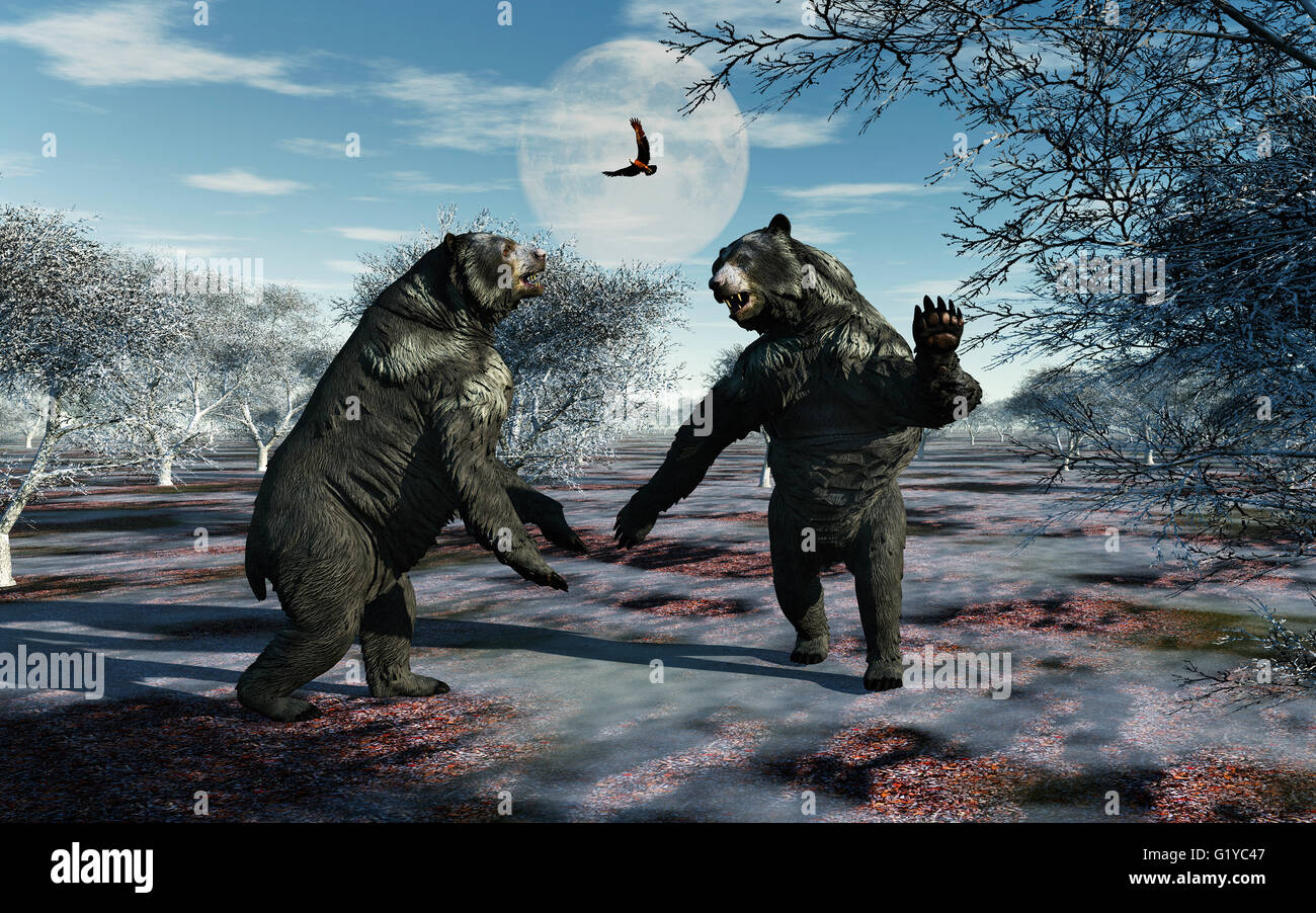 Arctodus Bears , Also Known As Short-Faced Bears . Involved In A Territorial Dispute. - Stock Image