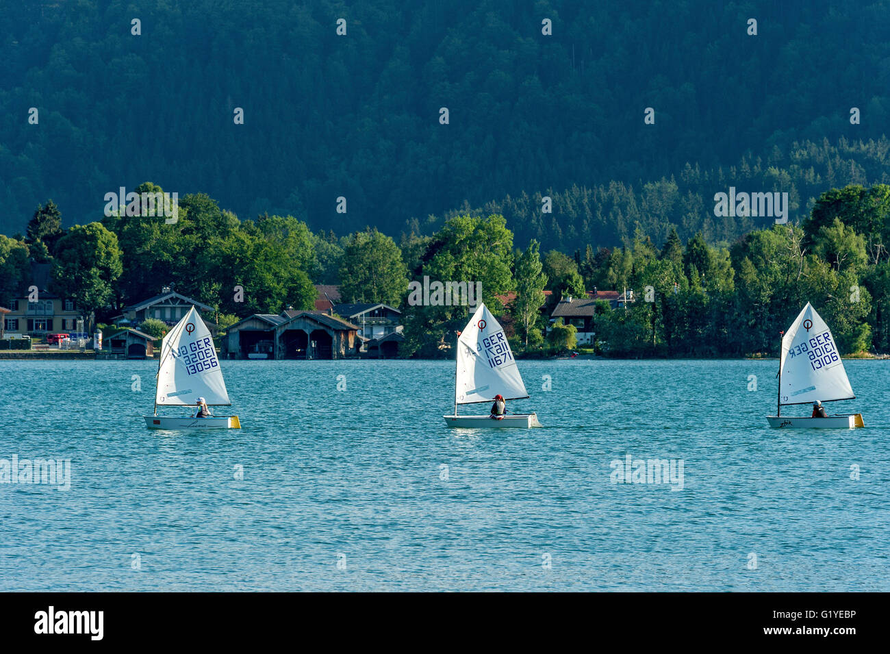 Regatta with children in sailing boats, dinghy type Optimist or Opti, Tegernsee, Upper Bavaria, Bavaria, Germany - Stock Image