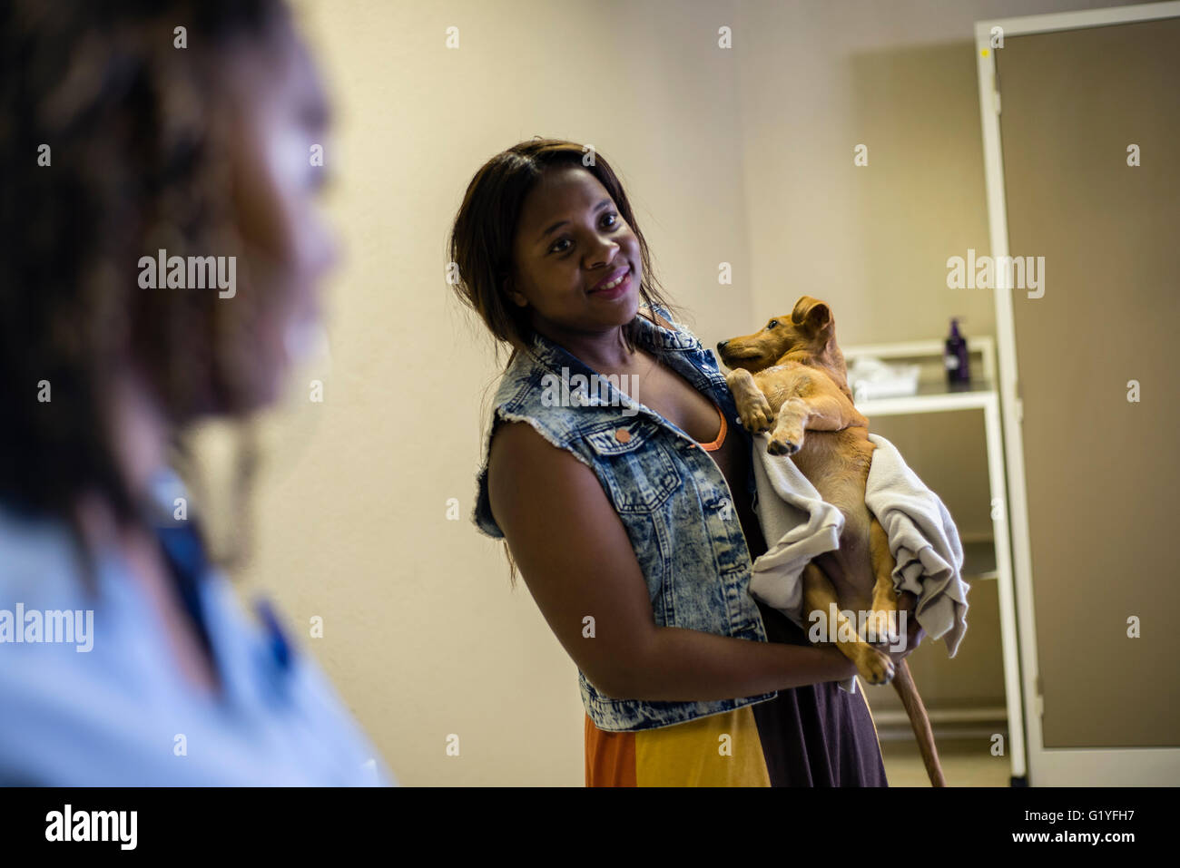 Veterinary clinic in Windhoek, Namibia (Photo by Oleksandr Rupeta) - Stock Image