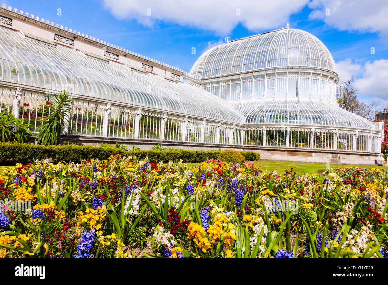 Palm House in Belfast - Stock Image