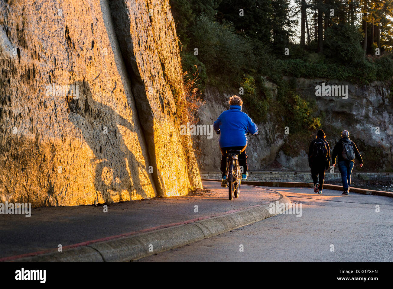 Bicyclist, Stanley Park sea wall at sunset, Vancouver, British Columbia, Canada - Stock Image
