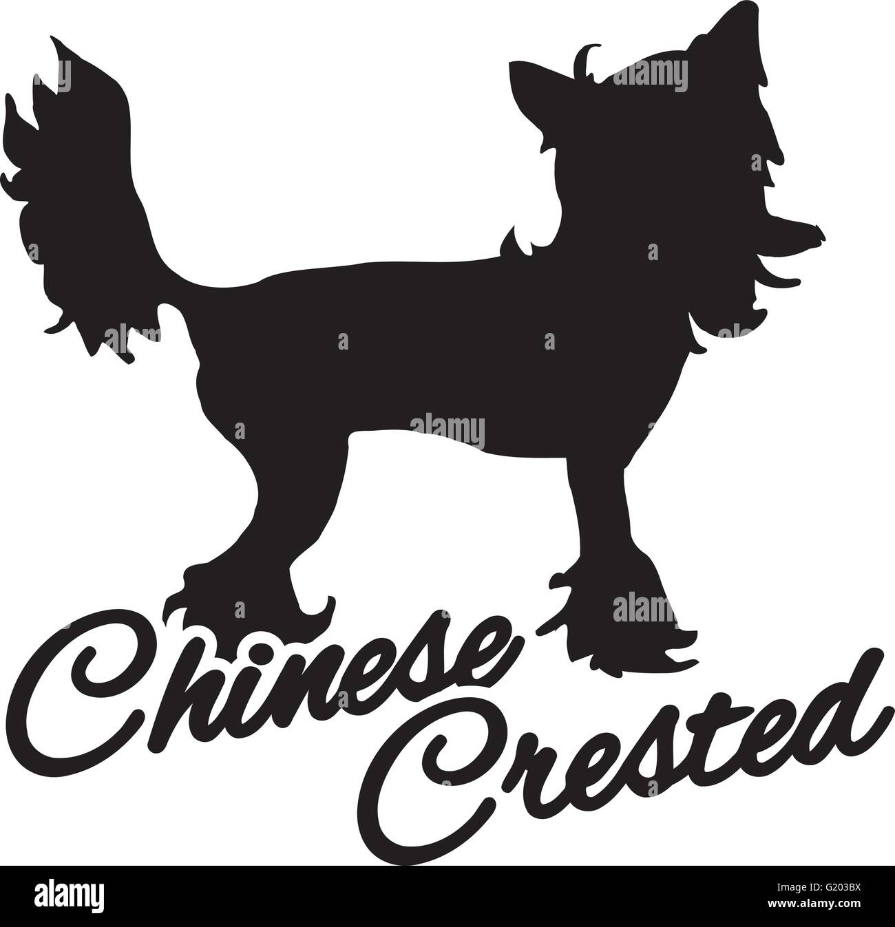 Chinese crested with breed name - Stock Vector