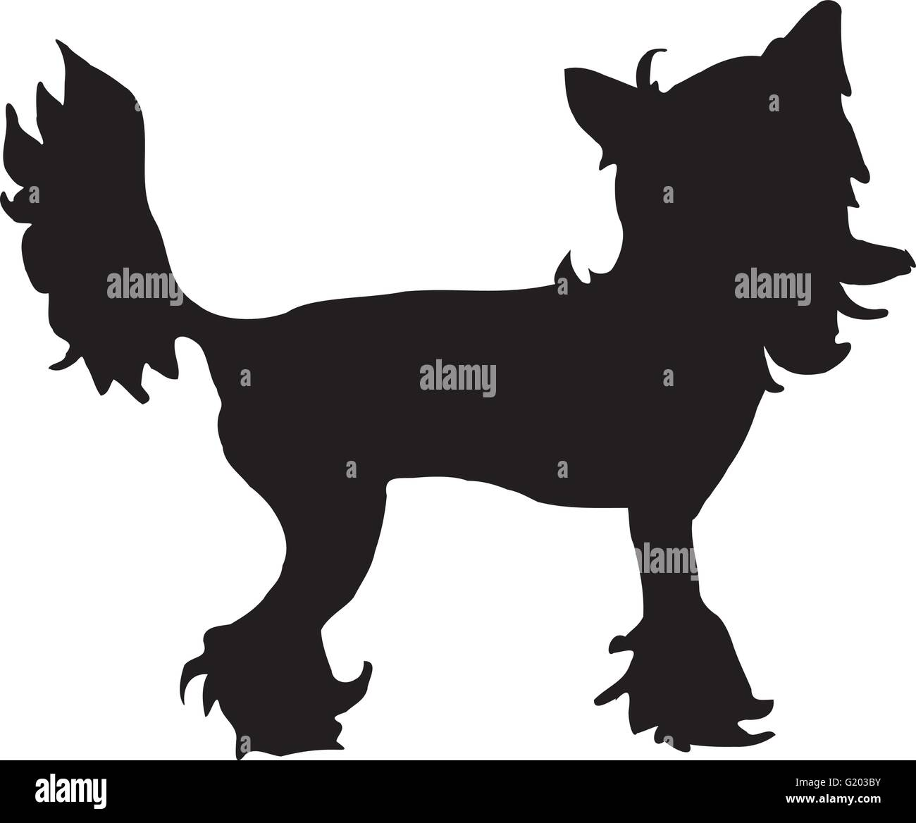 Chinese crested silhouette Stock Vector