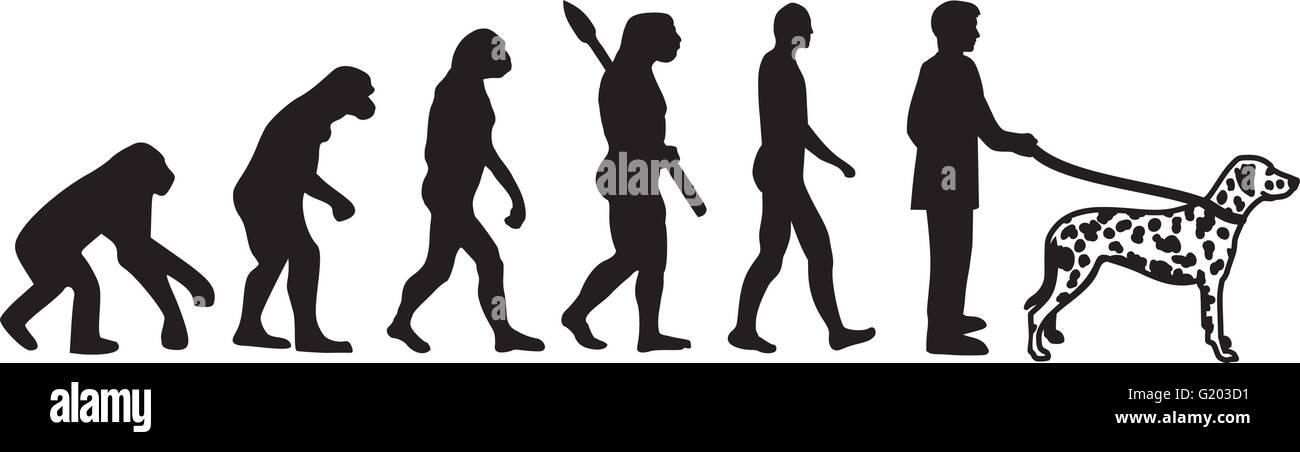 Dalmatian evolution - Stock Vector
