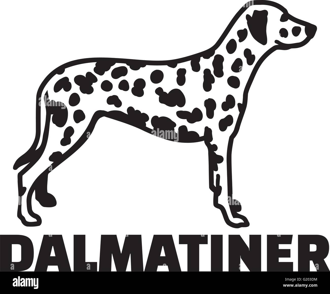 Dalmatian with breed name german - Stock Vector