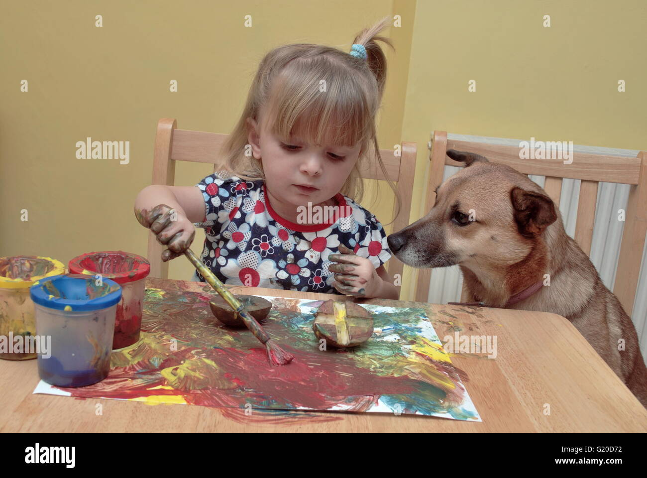 A young child painting at table in her home with the family dog watching her, looking curious. - Stock Image
