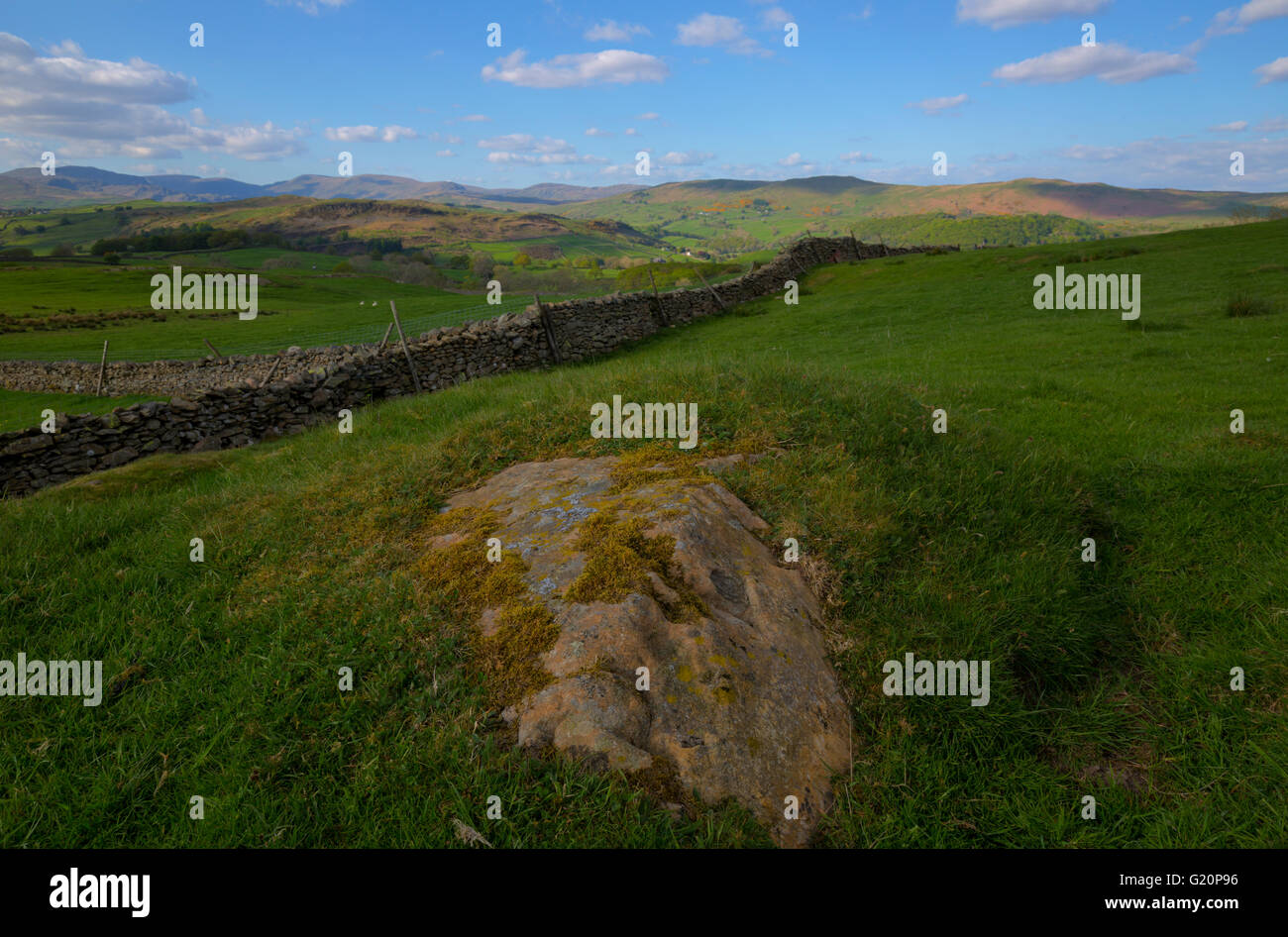 rural setting on farmland in the lake district near the village of crook - Stock Image